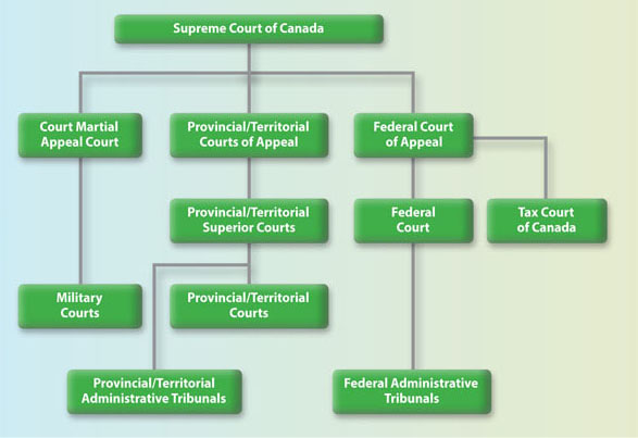 Organization of the Judicial Branch