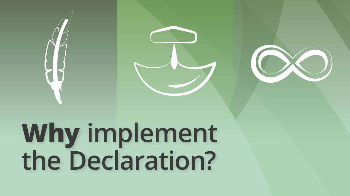 Why implement the Declaration?