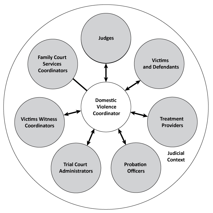 Chapter 5 - Coordination of court proceedings - Making the Links in